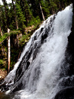 Waterfall in Gallatin National Forest