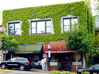 Vine Covered Building